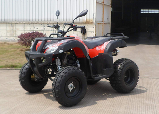 China CVT All Terrain Utility Vehicle 200cc 4 Stroke Oil-Cooled Engine supplier