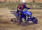 China Blue Adult 250cc Utility ATV Racing ,Five Speed With Reverse factory