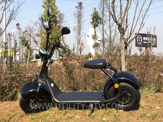 China Big Fat Tire Standing Electric Scooter Runscooters 60V 1500W For School Road distributor